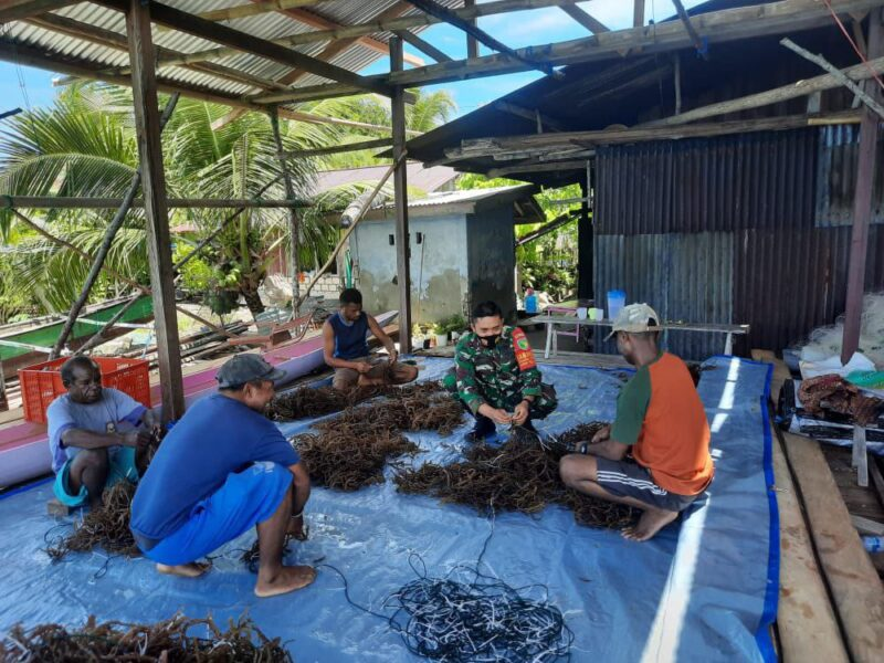 Babinsa Yapsel, merupakan salah satu bentuk dukungan kepada salah satu warganya yang berprofesi sebagai petani rumput laut.