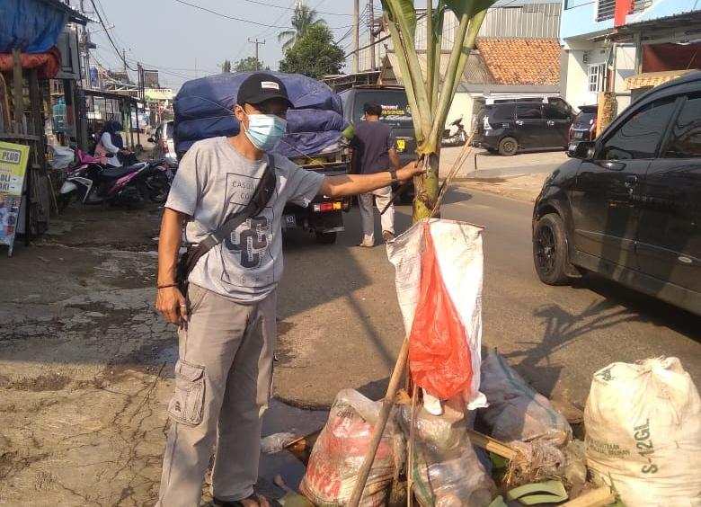 Warga Kampung Cipacung jengkel adanya lubang besar yang mengakibatkan kerap terjadinya kecelakaan sehingga di tanami pohon pisang di Jalan