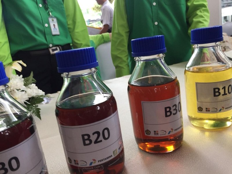 Seorang pengusaha millenial berhasil sulap minyak jelantah gorengan menjadi bahan bakar biodiesel hingga meraup ratusan juta rupiah.