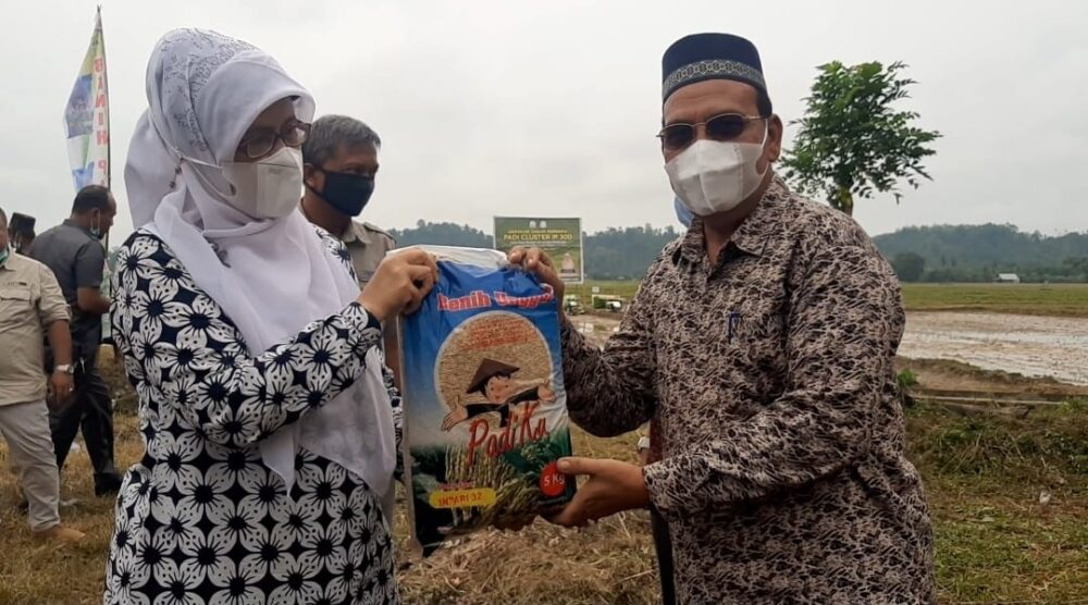 Pemerintah Kabupaten (Pemkab) Aceh Timur menyambut baik dan turut bergembira dengan diselenggarakannya tanam padi perdana IP 300.