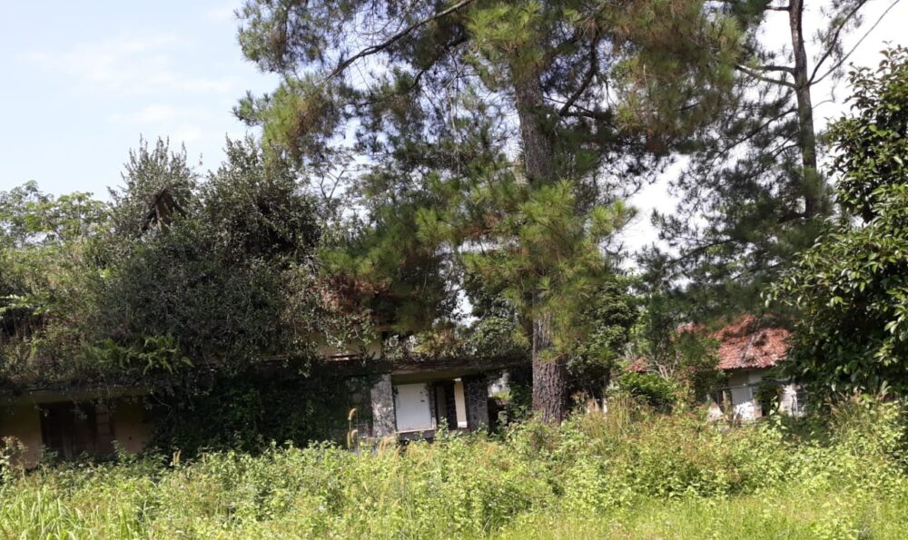 Gedung tua bekas penjajahan belanda yang jadi tempat urama kepemerintahan belanda di masa penjajahan kini tinggal gedung tidak terurus